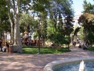 В бакинских парках отравляют газоны?