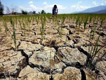Грозит ли Азербайджану засуха?