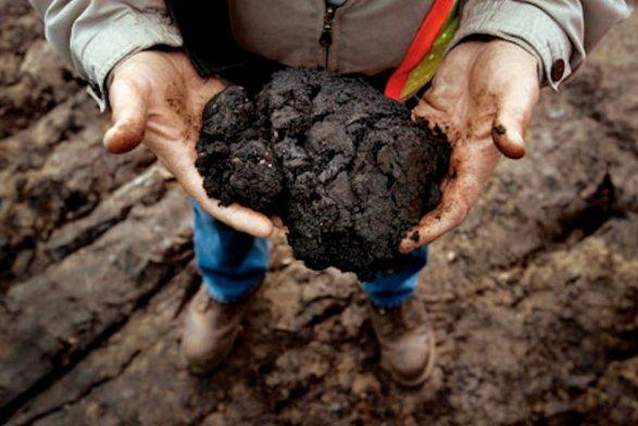 Китай виюле сократил импорт нефти изРоссии на14%
