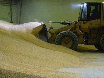 Турция ограничила поставки российского зерна из-за помидоров