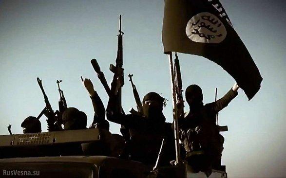 Курдские отряды взяли «столицу» ИГвкольцо