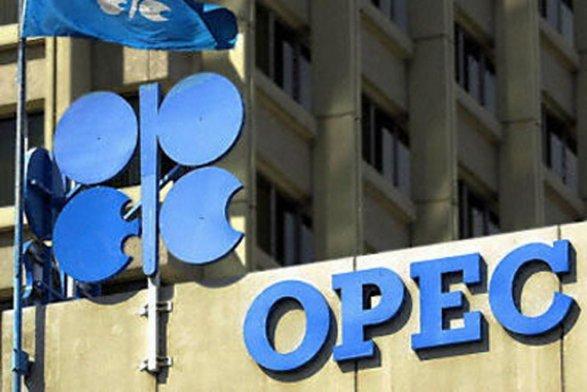 Министр нефти Ирака: ОПЕК продлит пакт озаморозке нефтедобычи