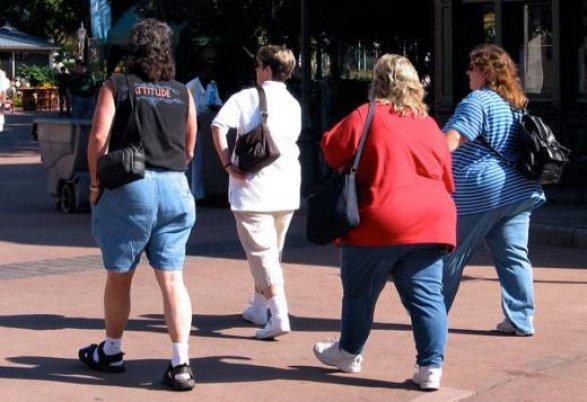 Топ самых «жирных» стран возглавили США, Мексика иНовая Зеландия