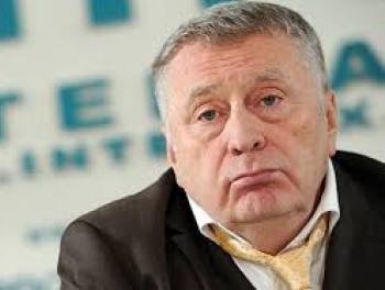 Жириновский встал за прилавок