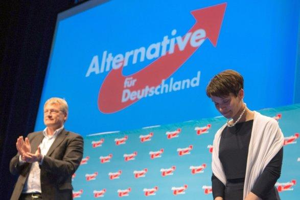 Результаты экзиполов подтверждают победу Меркель навыборах вГермании