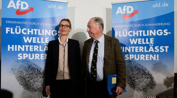 Впервый раз вистории современной Германии вБундестаг проходят националисты