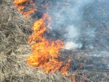 Пожар в Джалилабаде
