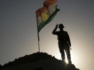 США - акушерка при родах Курдистана