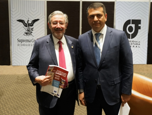 Вице-президент СЕПЕЖ Рамин Гурбанов представил страны Европы на международном семинаре