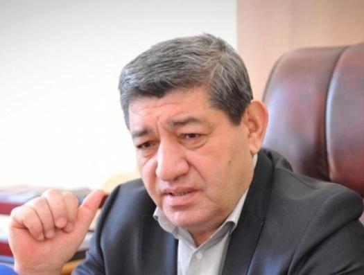 Академик Низами Джафаров призвал создать комиссию по изучению останков Мушфига