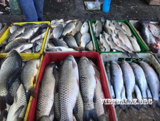 Самая дешевая рыба на самом грязном базаре Баку