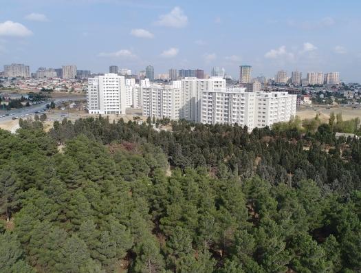 Ильхам Алиев придумал еще один проект: льготные квартиры для малоимущих