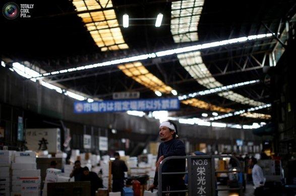 Парламент Японии разрешил использовать в стране иностранную рабочую силу