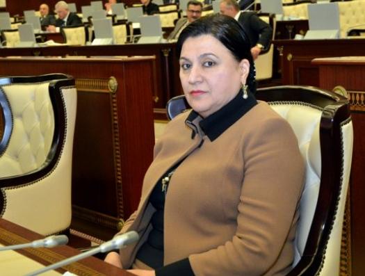 Эксперт Совета при Путине отвечает депутату Г.Бахшалиевой: «В России на азербайджанский язык запрета нет»