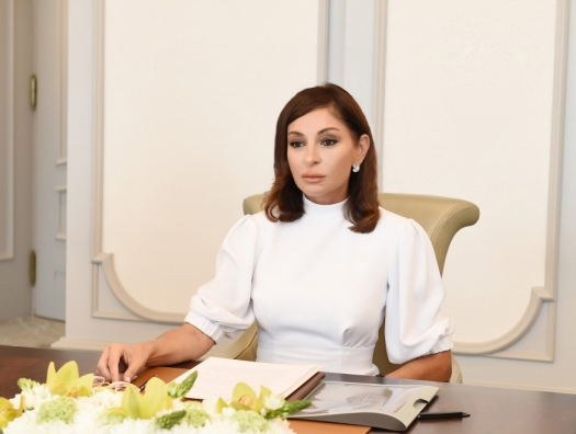 Мехрибан Алиева поручила трудоустроить сокращенных сотрудников «Азерэнержи»