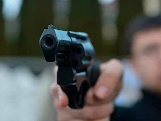 В Подмосковье азербайджанцев расстреляли из-за некачественного картофеля