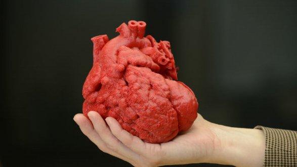Image result for Живое сердце впервые напечатали на 3D-принтере