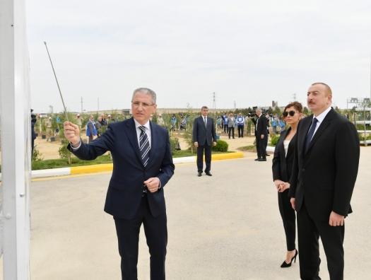 Алиевы посадили деревья в Баку