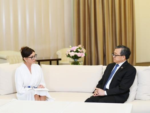 Замгенсека ООН на встрече с Мехрибан Алиевой