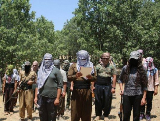 К чему взывает турецкая кровь в столице Курдистана