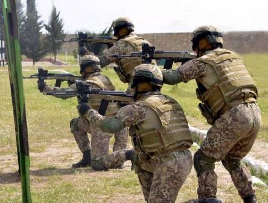 Экс-начальник разведки Армении: «Азербайджанские диверсанты захватили наш стратегический пост…»