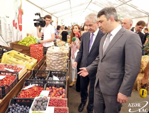 Вице-премьер А.Ахмедов прошелся по базарам, посмотрел на цены… и задумался