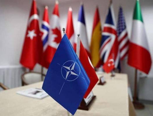 Турции надо без НАТО