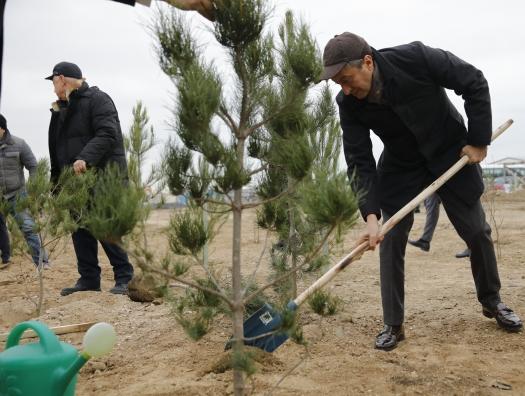 Сотрудники MIDA на акции по озеленению