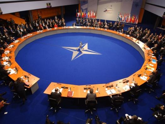 Американцы торопят: Поскорее Грузию и Украину в НАТО