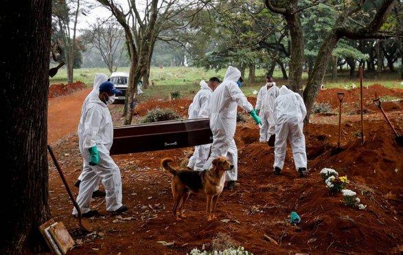 Коронавирус продолжает бушевать в США и Бразилии