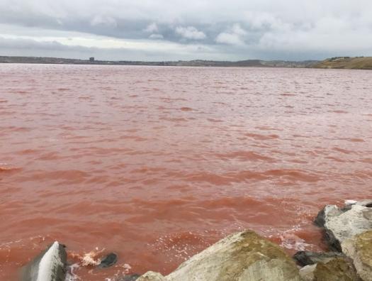 Завтра будет поздно: Масазырское озеро убивают