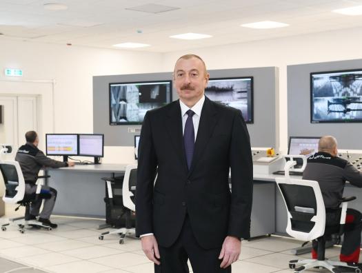 Целина Ильхама Алиева