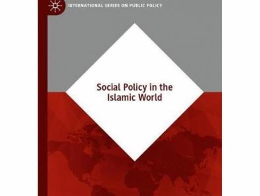 Влиятельное издание Springer International Publishing об успешной деятельности MİDA