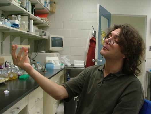 Завлабораторией Института молекулярной генетики К.Северинов в интервью haqqin.az: «Вакцина никогда не попадает в мужские сперматозоиды и женские яйцеклетки»
