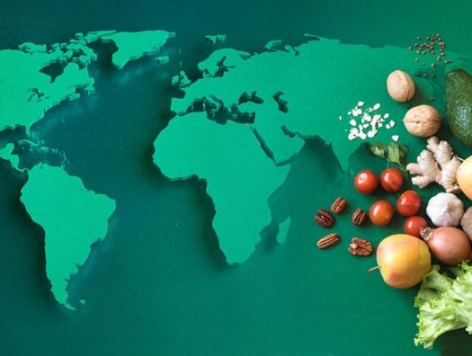 Концептуальное интервью Тофика Нифталиева об угрозах продовольственной безопасности