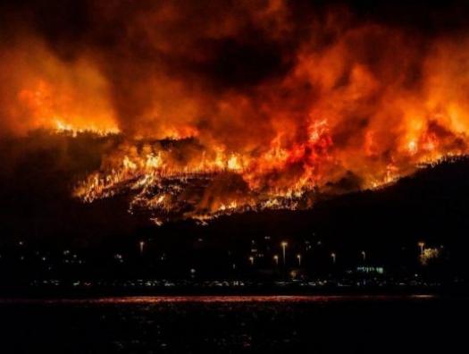 Курдские террористы подожгли леса Турции