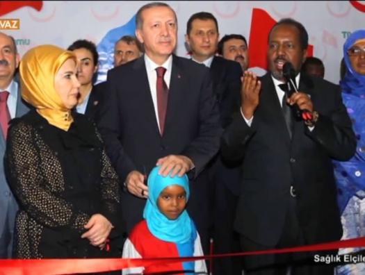 Новый бросок Анкары: теперь в Сомали